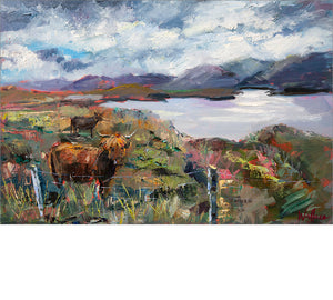 Highland Cattle and Harris Hills