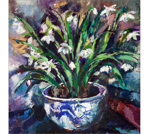 Snowdrops in Chinese Planter