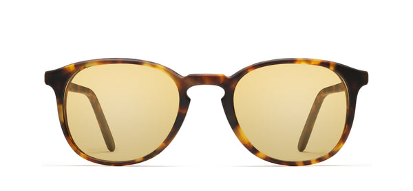 Chromoclear Ben in tortoise