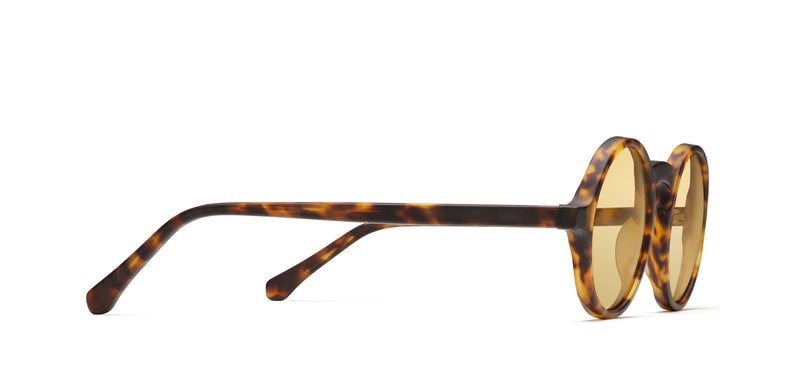 Chromoclear Focus Oberlin in tortoise