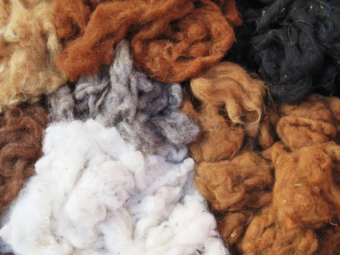 What are the Differences Between Types of Wool?