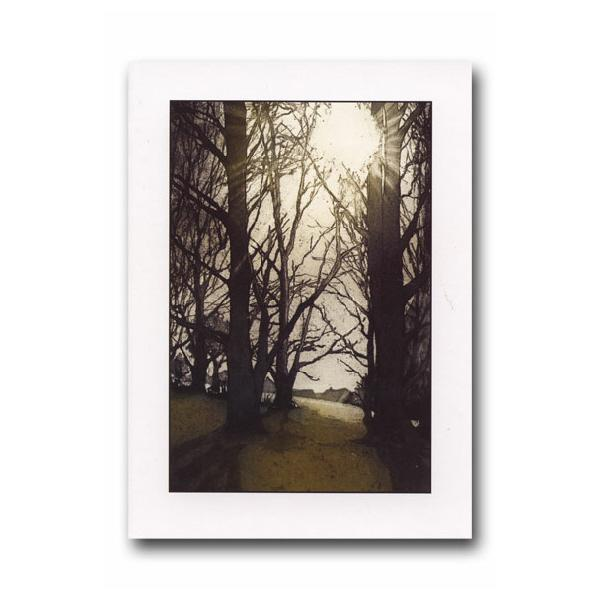 Morning Light Greeting Card - James & May