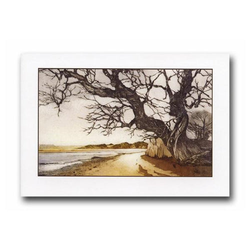 Nacton Shores Revisited Greeting Card - James & May