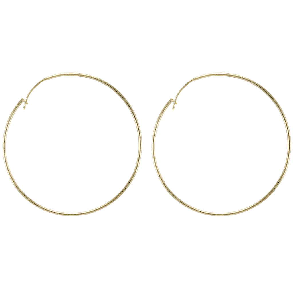 Lisa Hoop Earrings