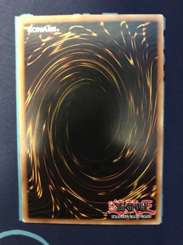 Black Rose Dragon-Ghost Rare-Unlimited Edition-CSOC EN039 (LP)