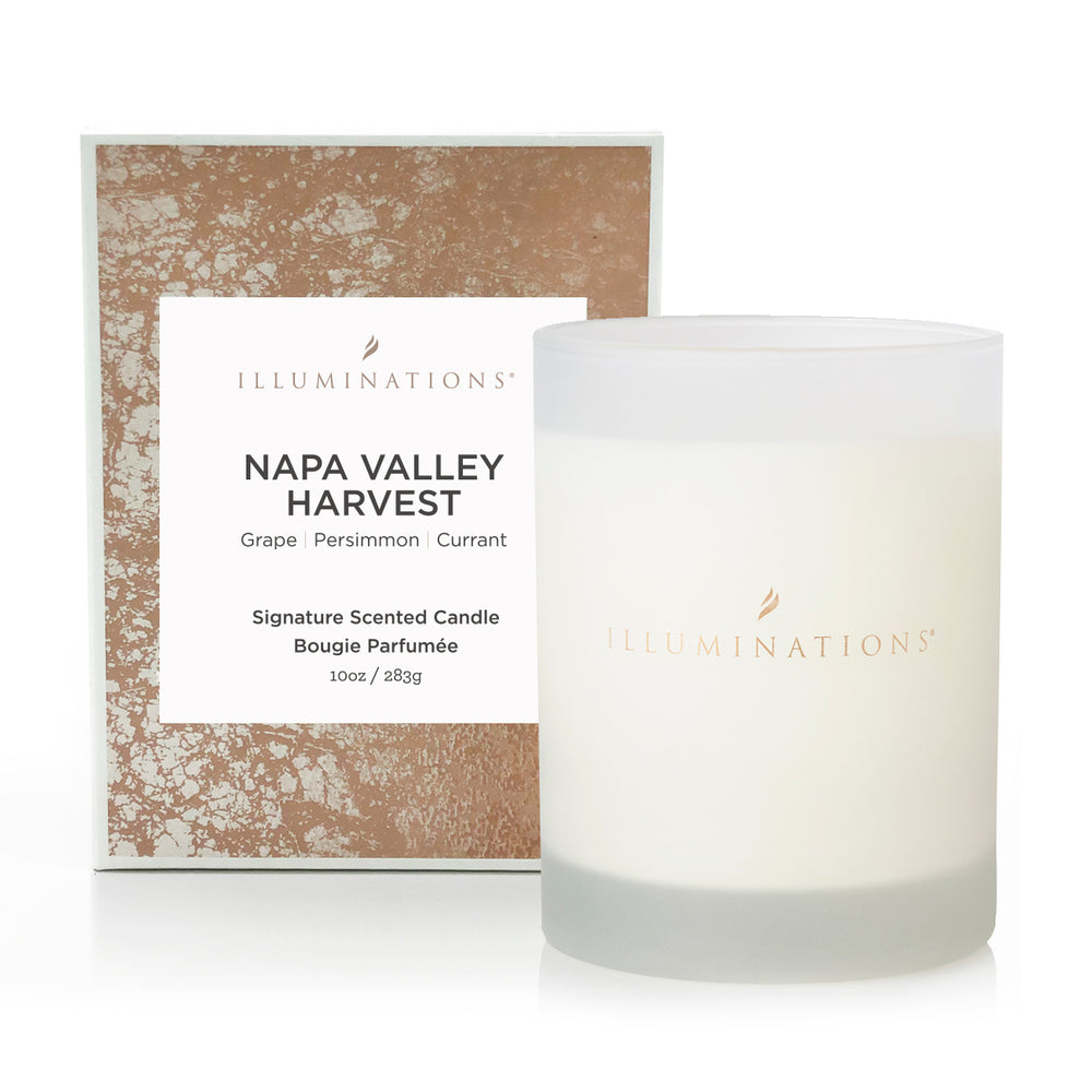 Buy Illuminations Napa Valley Harvest Signature Scented Candle Online Illuminations