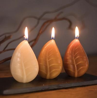 Leaf Votive Candles S/3 Brown