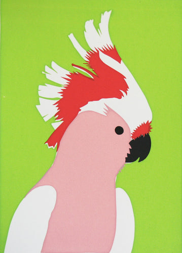 'Elvis' the Pink Cockatoo - Relish Art Studio