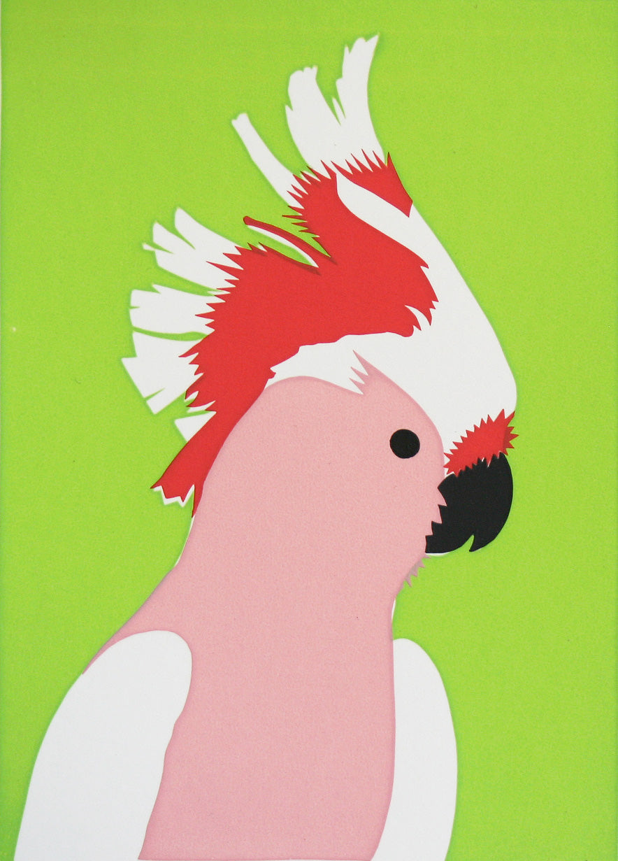 'Elvis' the Pink Cockatoo