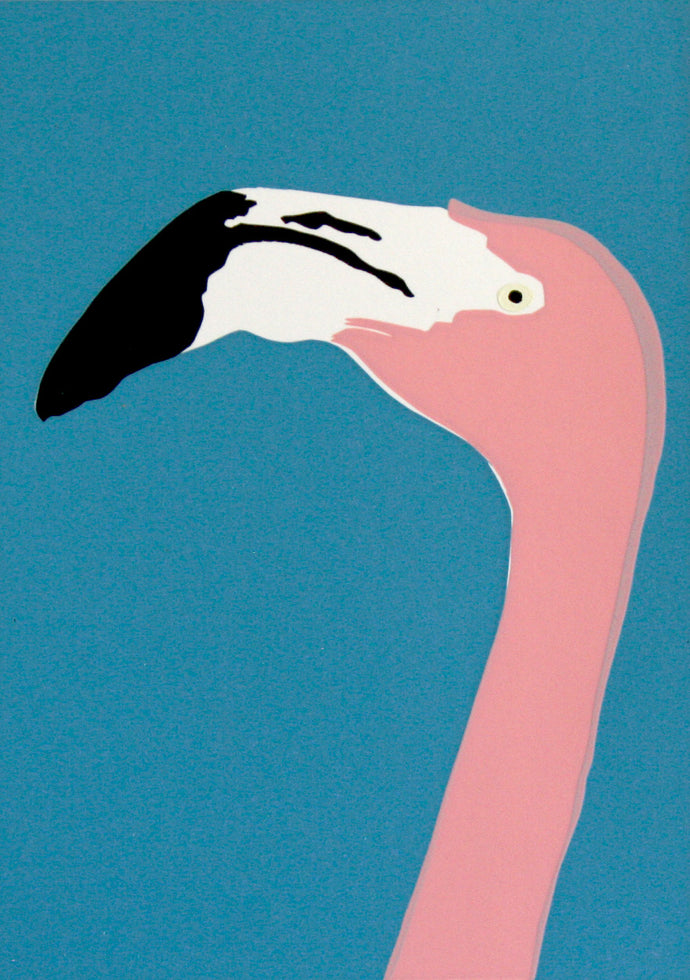 'Maude' the American Flamingo