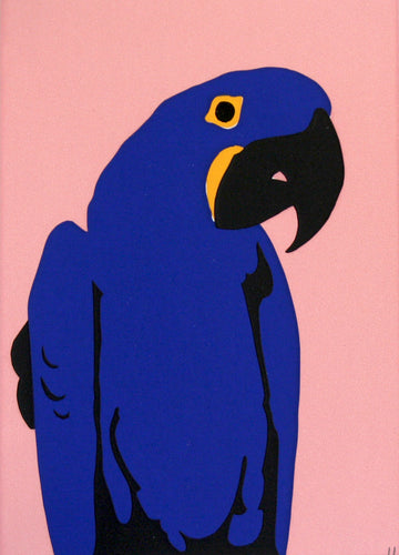 'Syd' the Hyacinth Macaw - Relish Art Studio