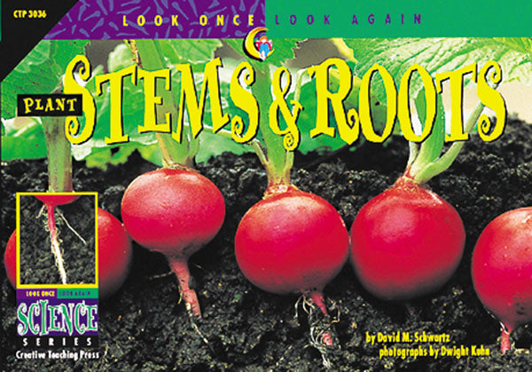 Plant Stems & Roots