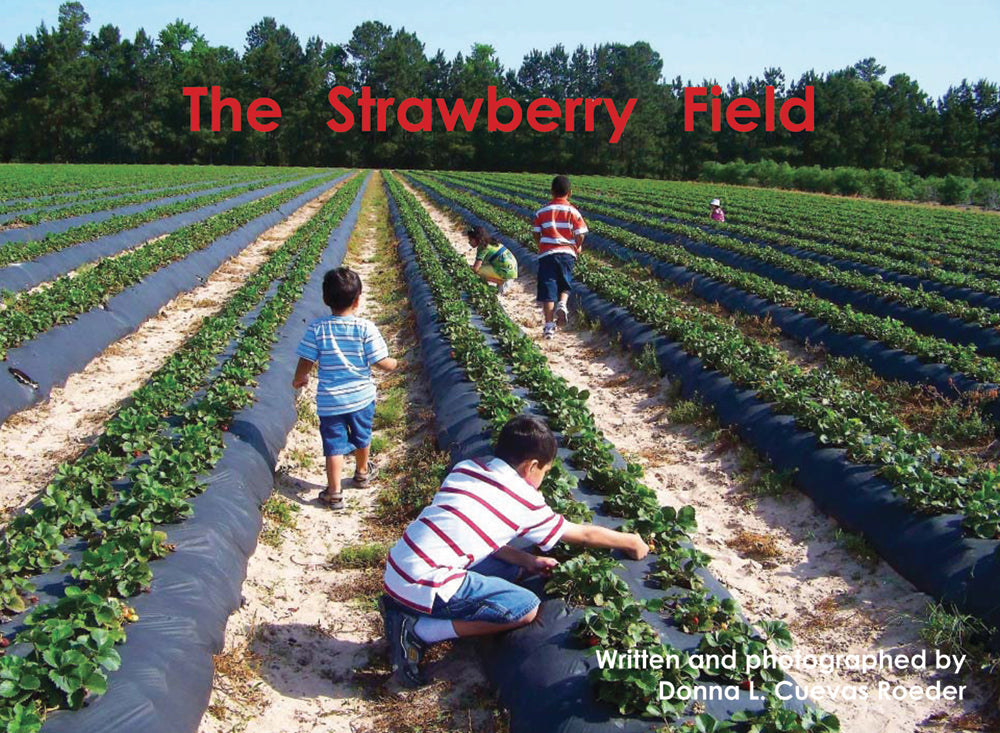 The Strawberry Field