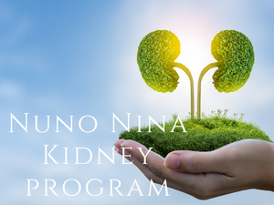 Frequency - Nuno Nina Kidney Program <BR> Nuno Nina 腎臟設計程式 - newearthstore