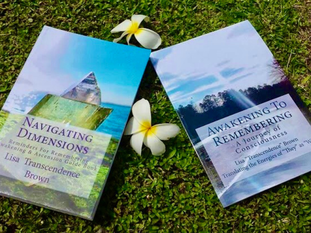 Awakening To Remembering + Navigating Dimensions Book Set - newearthstore
