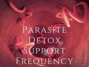 Frequency - Parasite Cleanse Program <BR> 寄生蟲清洗頻率程式 - newearthstore