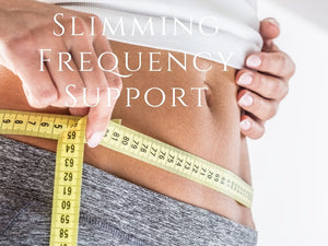 Frequency - Slimming Frequency Program <BR> Nuno Nina 設計瘦身支持程式