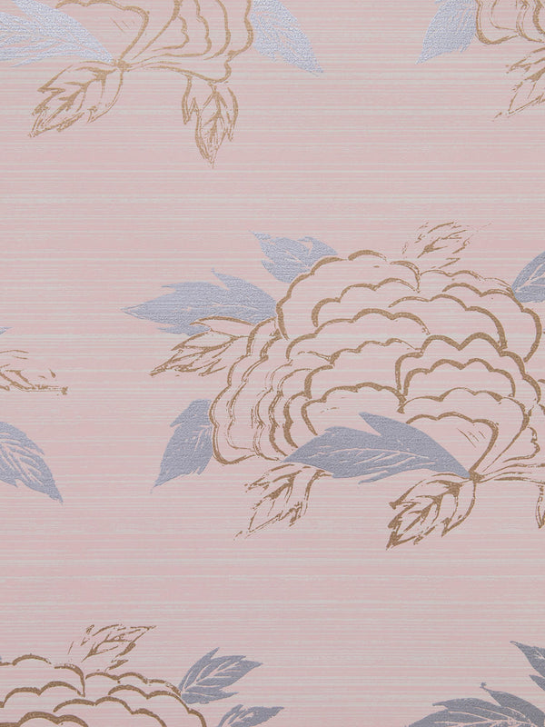 Chrysanthemum Wallpaper in Blush