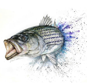 Custom Watercolor Fish art