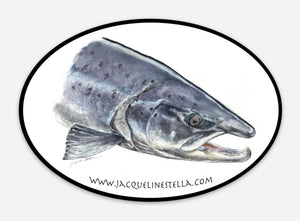 Atlantic Salmon weather proof Oval Vinyl decal/Sticker
