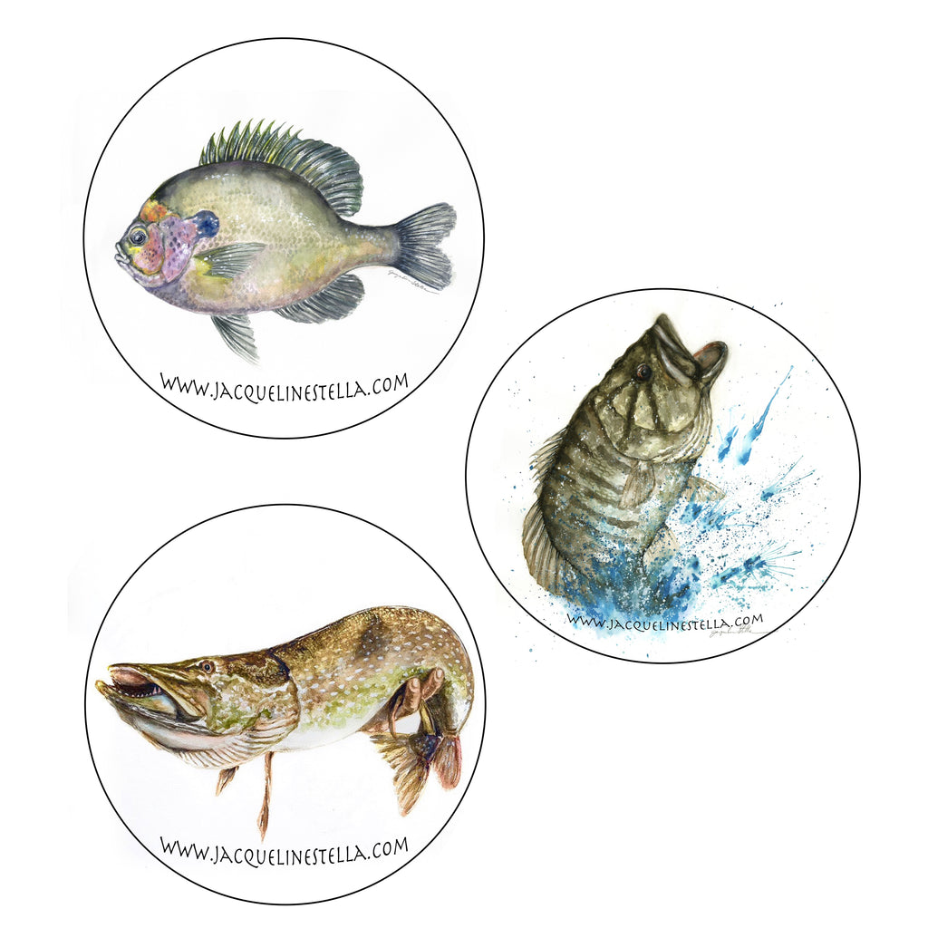 6-piece Smallmouth Bass/Pike/Bluegill coaster set