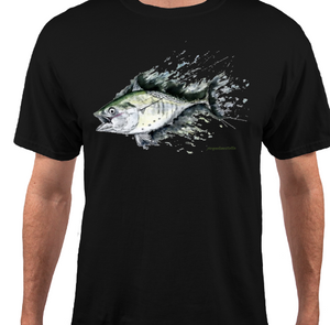 False Albacore on Fly Tee