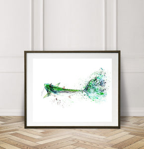 Limited Edition Fine Art Print: Speed, I am speed, False Albacore on the fly