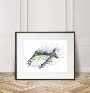 False Albacore, Albie on fly, Watercolor Painting Giclée Fine Art Print