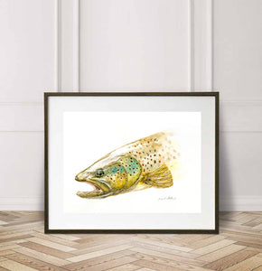 Brown Trout - close up, Watercolor Painting Giclée Fine Art Print