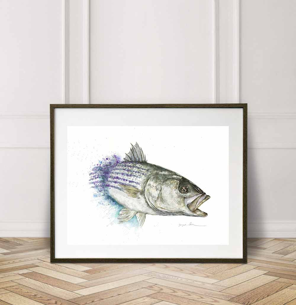Chasing Striped Bass Watercolor Painting Giclée Fine Art Print