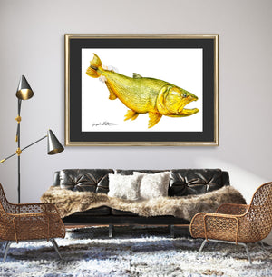 Limited Edition Fine Art Print: Golden Dorado