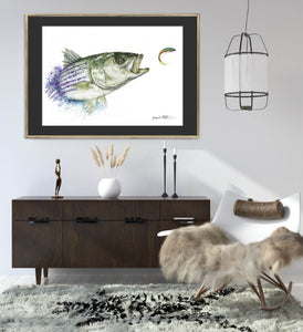 Limited Edition Fine Art Print: Savage Striper Pouncing on a Flatwing Flatmack Fly