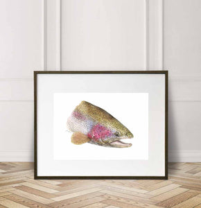 Rainbow Trout - close up, Watercolor Painting Giclée Fine Art Print