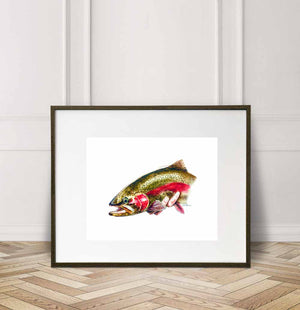 Rainbow Trout / Cutthroat Trout in hand, Watercolor Painting Giclée Fine Art Print