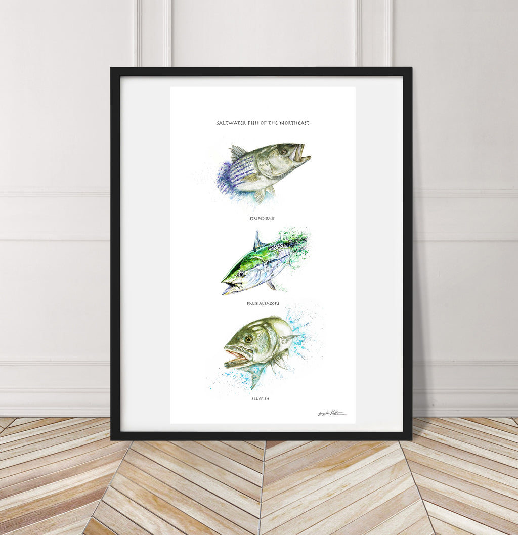 Limited Edition Fine Art Print: Saltwater Fish of the Northeast
