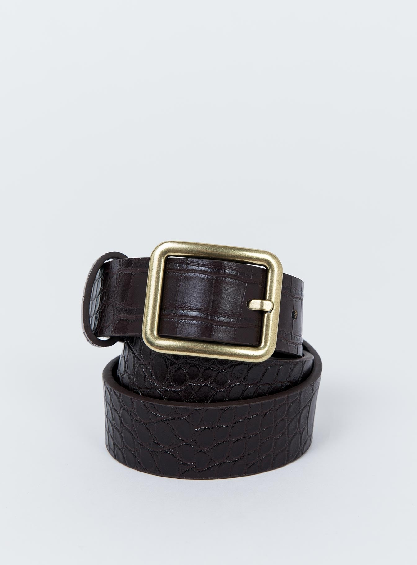 Reptile Rodeo Belt Chocolate