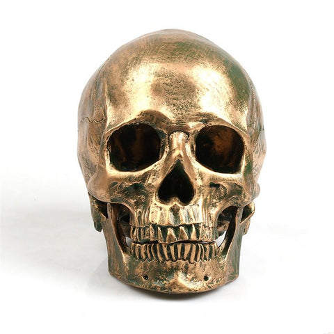 Image of Bronze Skull Home Decor Display