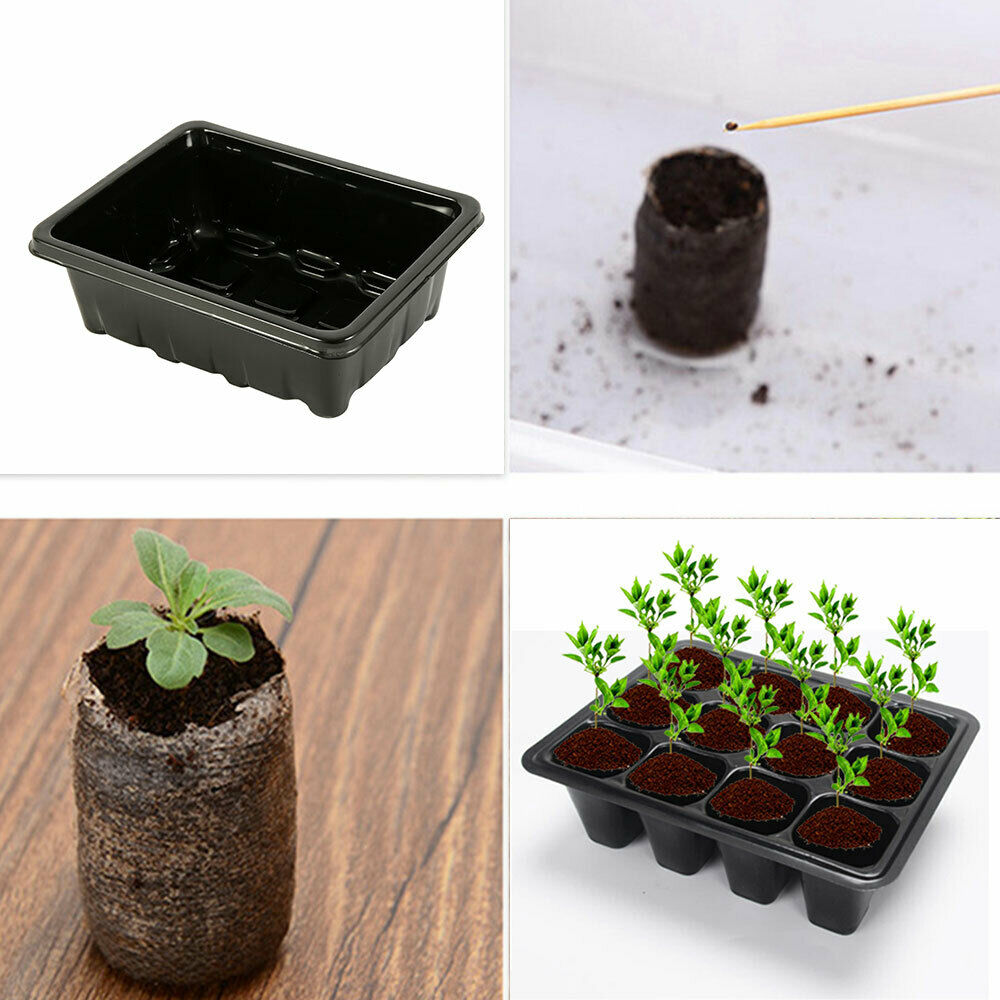 Seed Tray Seedling Starter Trays for Growing Starting Germination - 12 Set x5