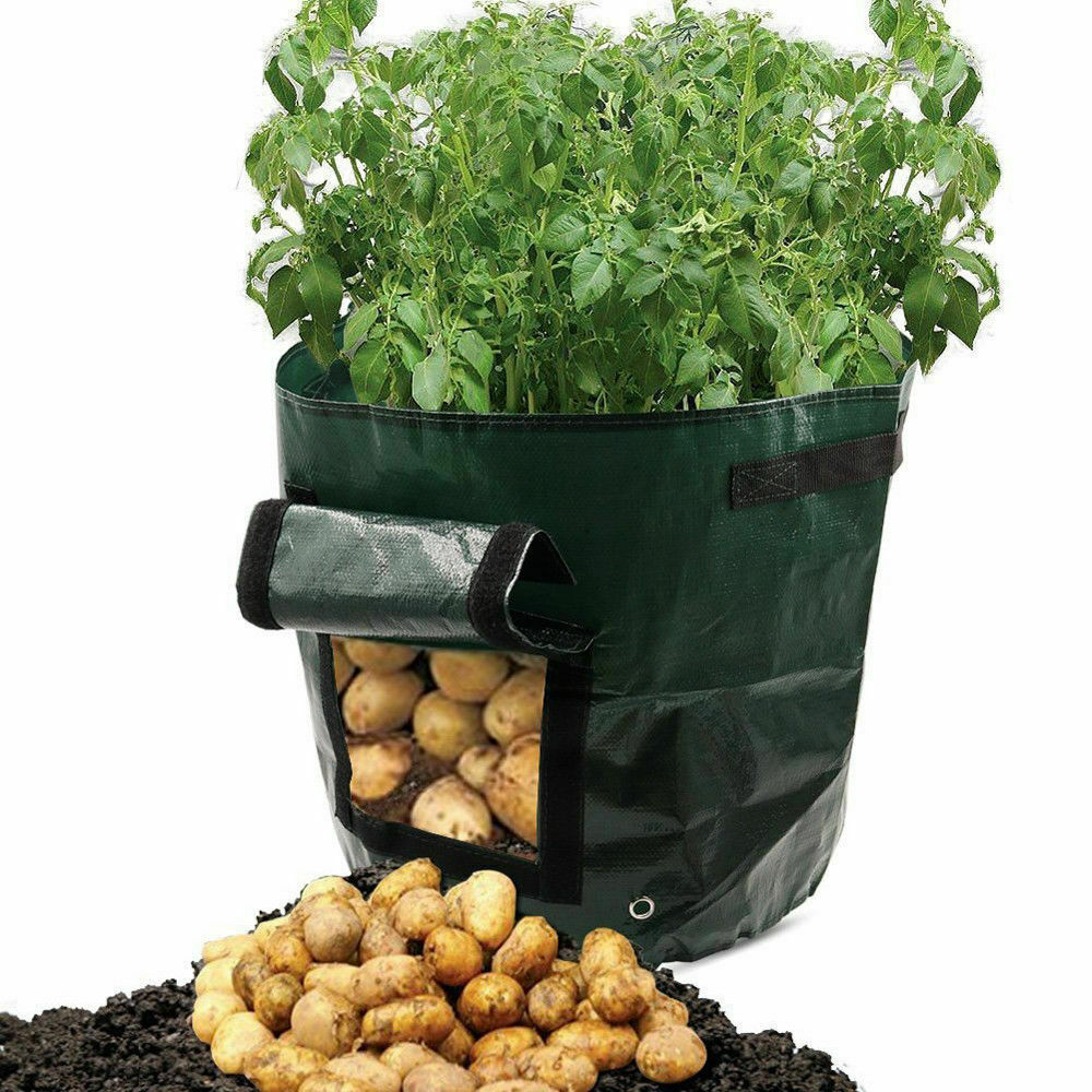 Potato Grow Bag Durable Re-Usable Balcony Patio Planters - Potato Tomato Veg - 37 Liter