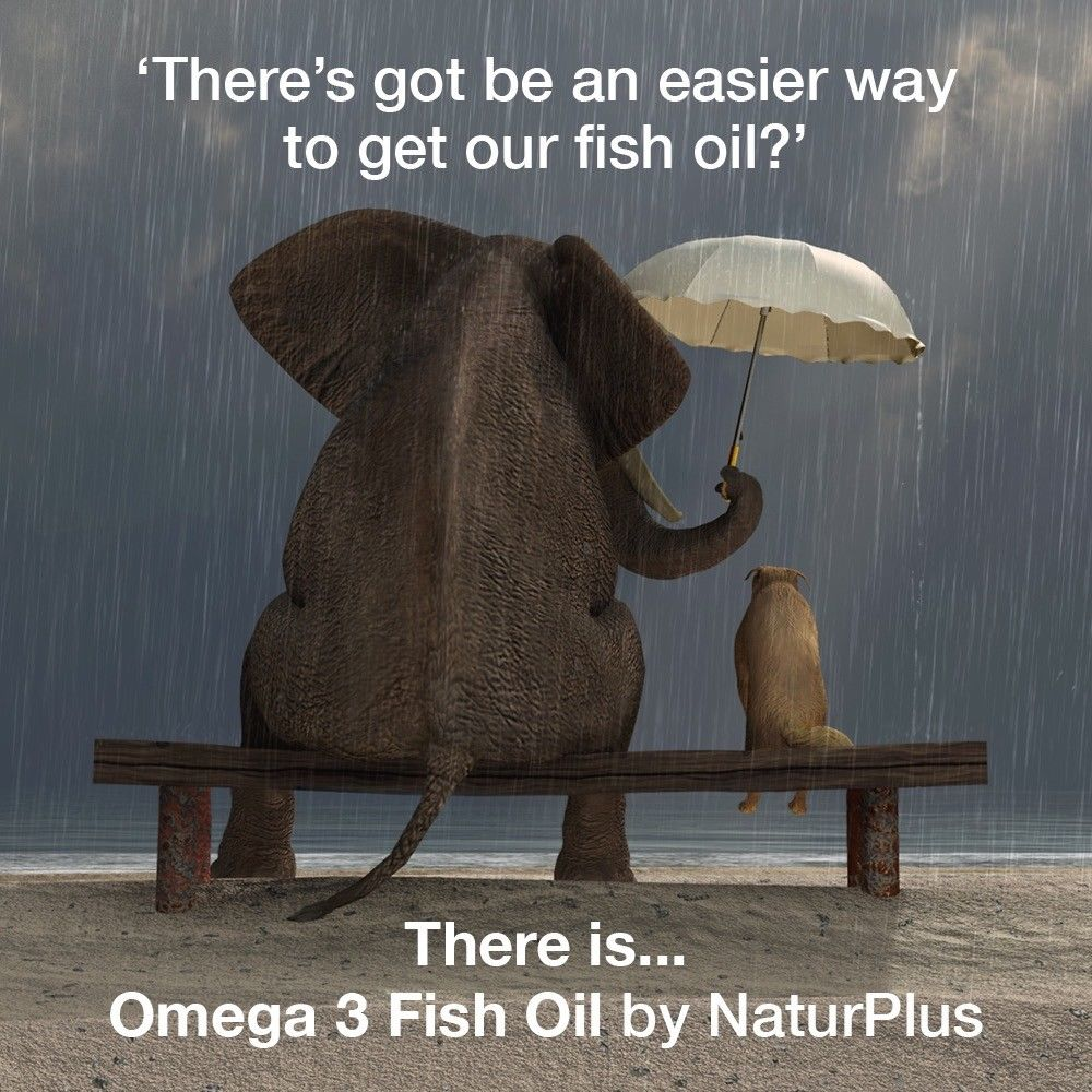 Omega 3 Fish Oil 1000mg - 365 Capsules