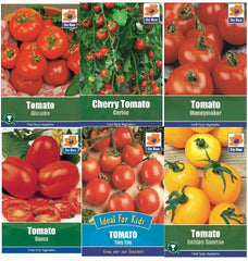 Tomato Seeds Grow Plant Vegetables Seed
