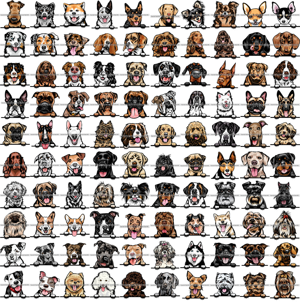 100 DOG BREEDS PEEKING Color Designs Volume 01 BUNDLE OF THE CENTURY RETAIL PRICE $300.00!