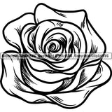 Nature Flower Rose 8iikk9bc.jpg
