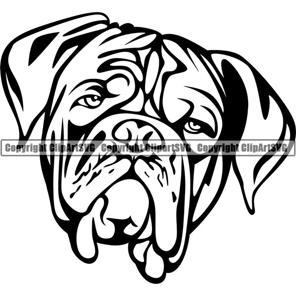 Animal Dog Dogue De Bordeaux Dog Breed Head Face ClipArt SVG 007