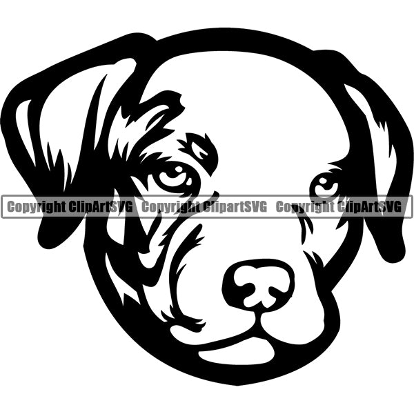Pit Bull Dog Breed Head Face ClipArt SVG 006