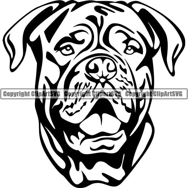 Animal Dog Dogue De Bordeaux Dog Breed Head Face ClipArt SVG 006