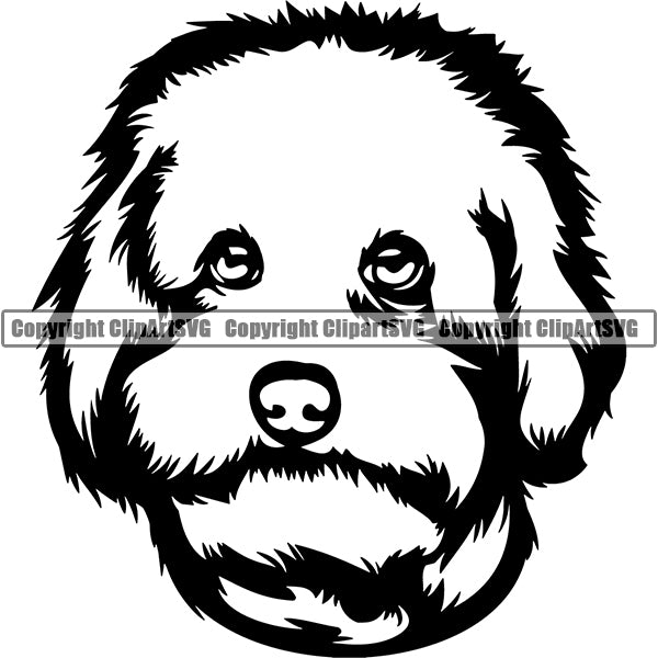 Maltipoo Dog Breed Head Face ClipArt SVG 002