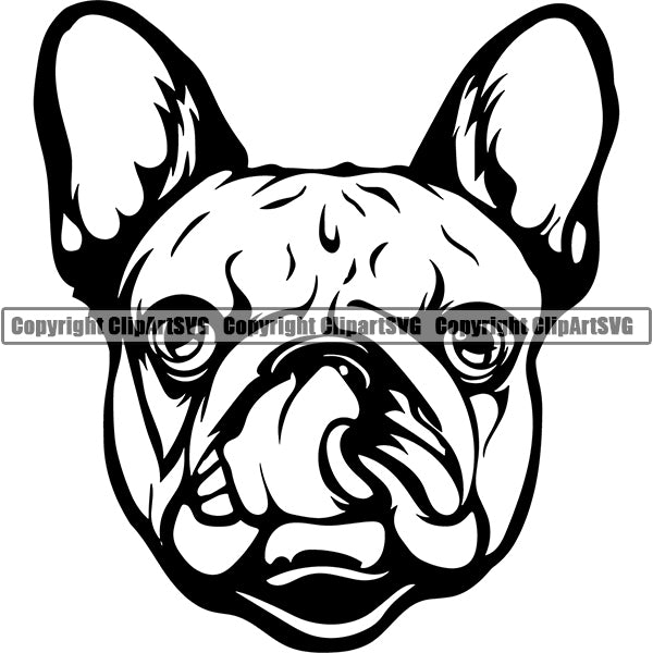 French Bulldog Dog Breed Head Face ClipArt SVG 006