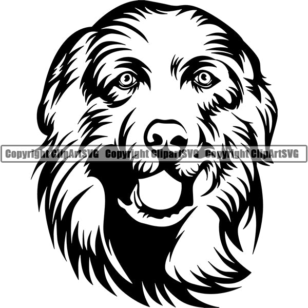 Great Pyrenees Dog Breed Head Face ClipArt SVG 001