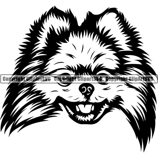Pomeranian Dog Breed Head Face ClipArt SVG 003